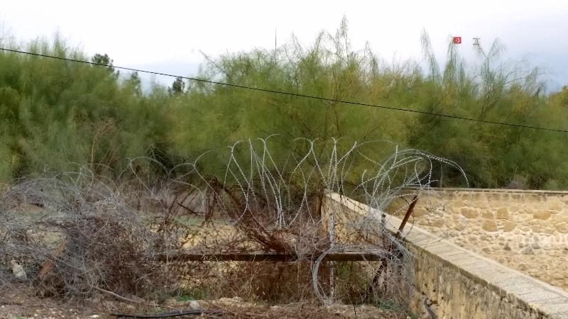 linea-verde-cipro