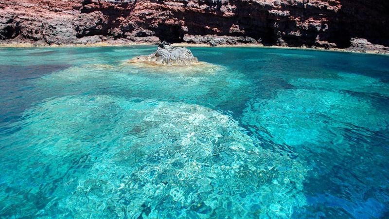 Isola_Capraia